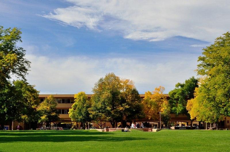 cele-mai-frumoase-campusuri-omofon12