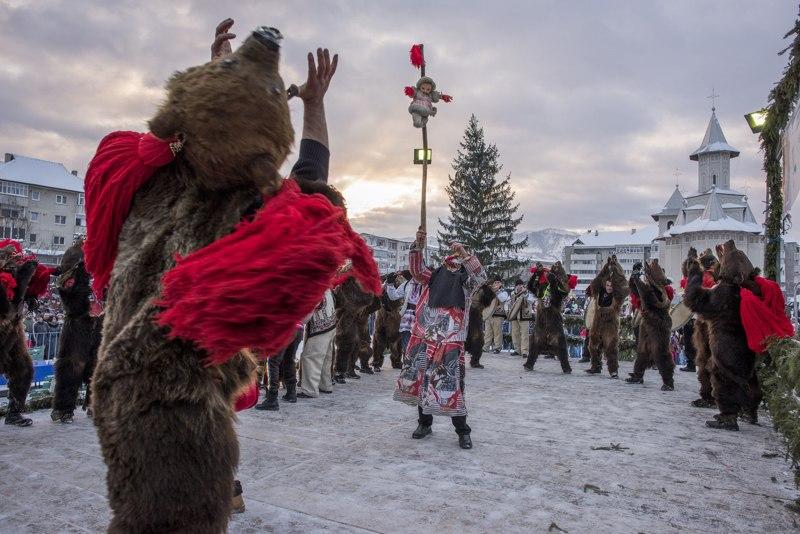dansul-ursului-omofon1